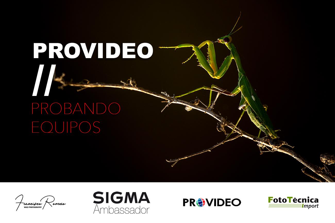 Provideo Sevilla